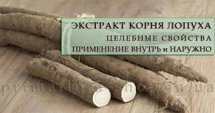 Экстракт корня лопуха: полезные свойства и применение внутрь и наружно